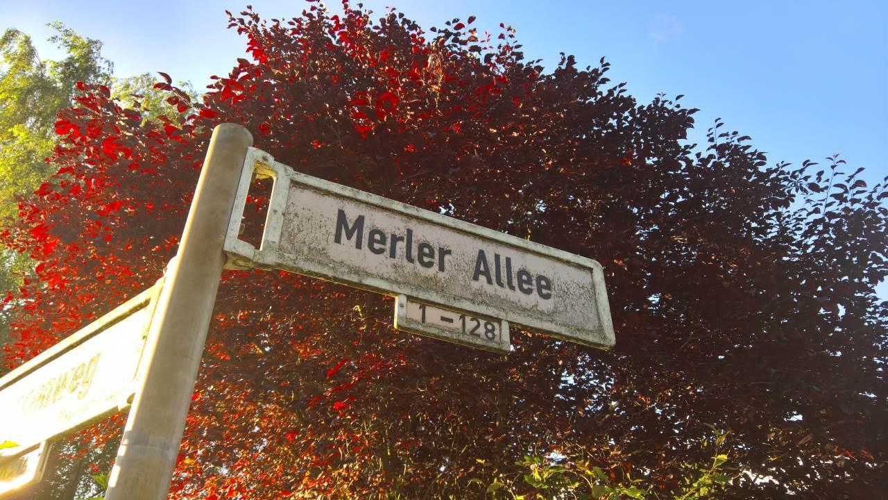 merler-allee