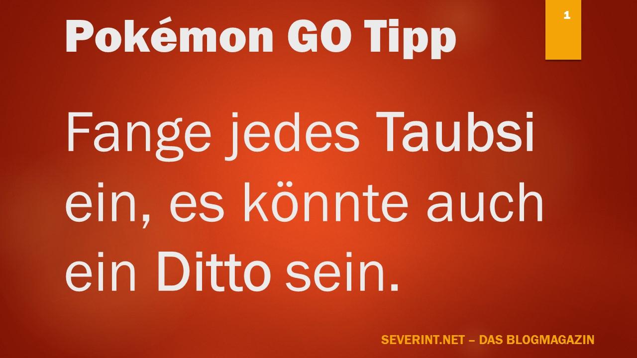 pokemon-go-tipp-taubsi