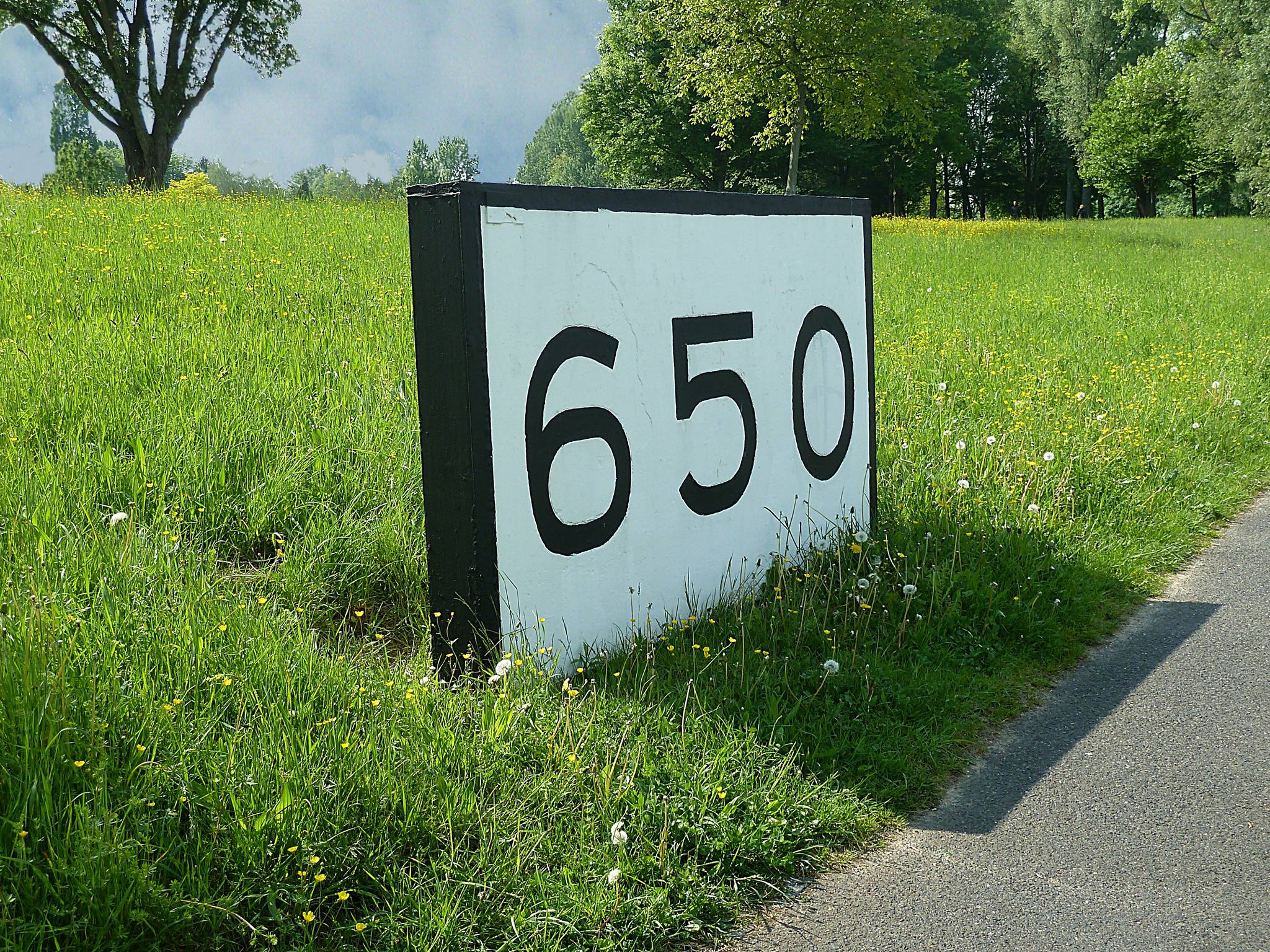 rheinkilometer-650-bonn-lr-rheinaue