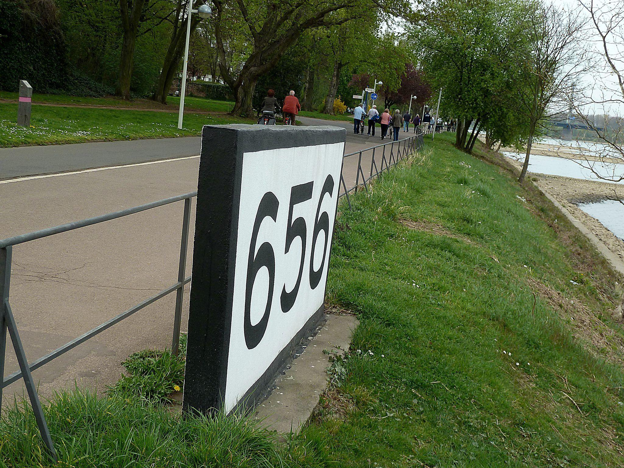 rheinkilometer-656-bonn-2