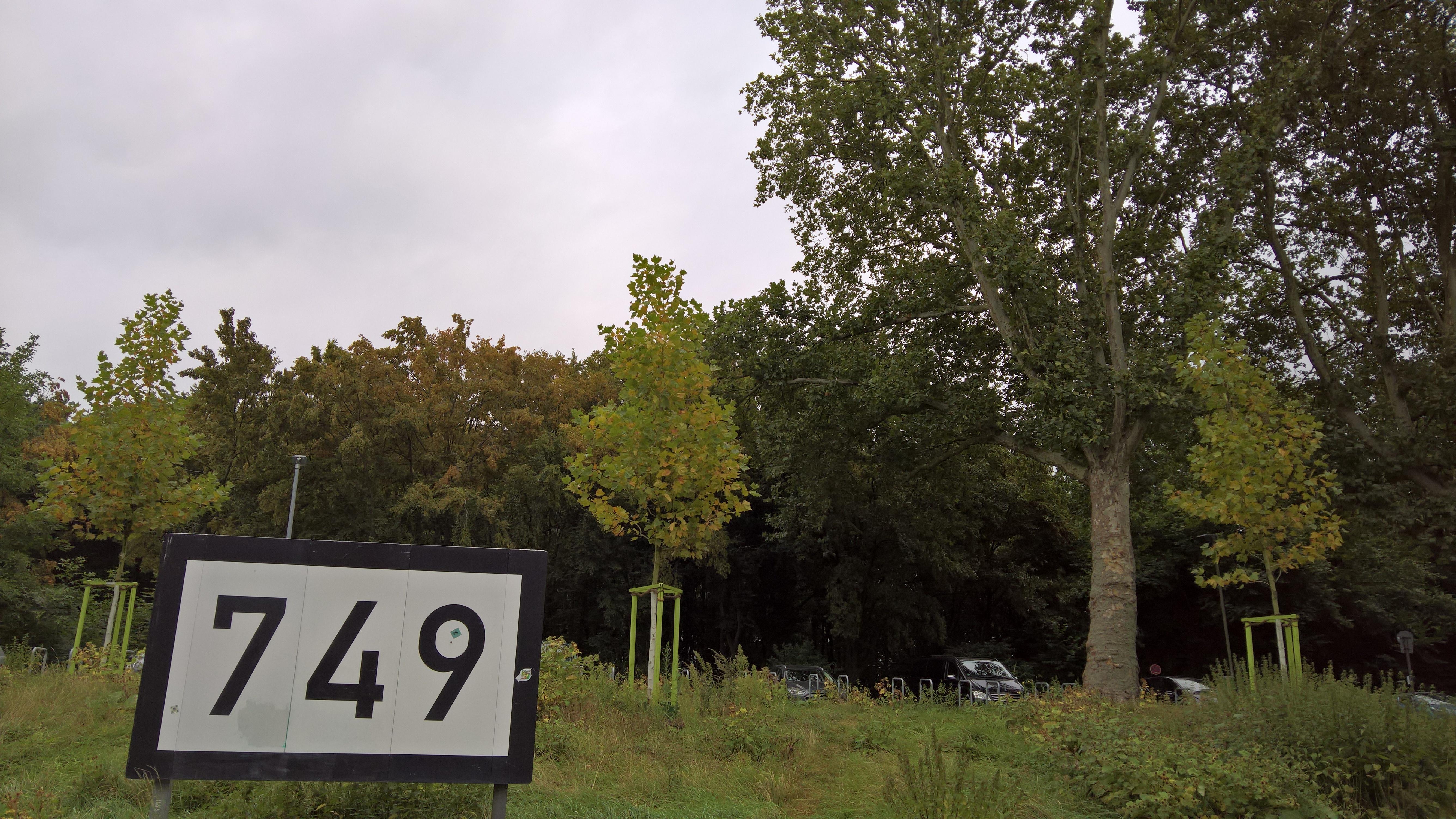 rheinkilometer-749-rechtsrheinisch